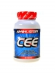 CEE Creatine ethyl ester 90 tablet