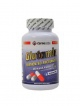 L-Glutamin 350 kapslí 500 mg