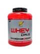 Whey DNA protein 1.87 kg