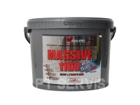 Massive weight gainer 1100 7264 g