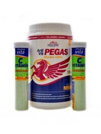 Artivit Pegas MSM 720g + 2x šumivý vitamín C