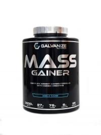 Mass Gainer 3000 g