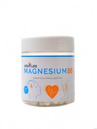 Magnesium B6 100 kapslí