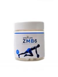 ZMB6 zinek magnesium B6 100 kapslí