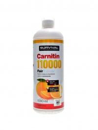 L-Carnitin 110000 1000ml