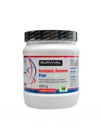 BCAA Instant amino fair power 400 g