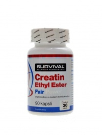 Creatin Ethyl Ester fair power 90 kapslí