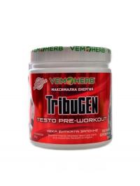 TribuGen 300 g borůvka